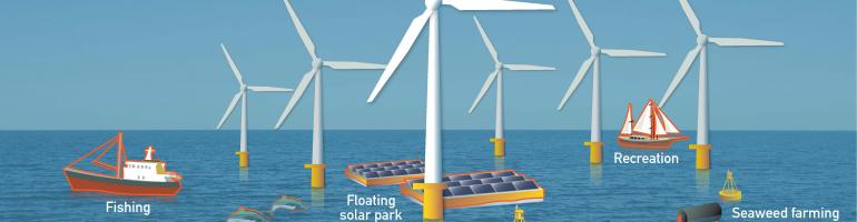 Offshore wind and the environment