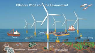 Illustration Offshore Wind and the Environment